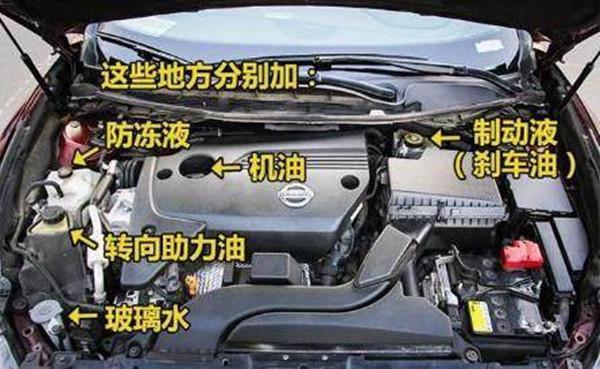 别被4S店坑了,老司机详解各种油液更换周期