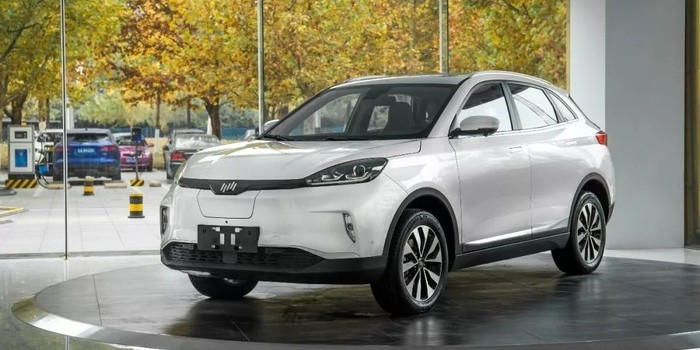 电量应用最大化 威马汽车交付数百台EX5