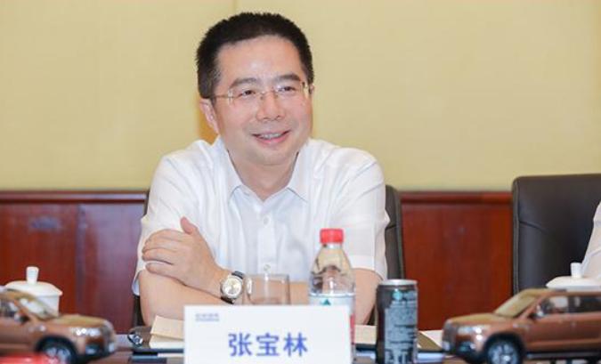 车价网:张宝林:长安汽车上半年创字当头 降库22万台